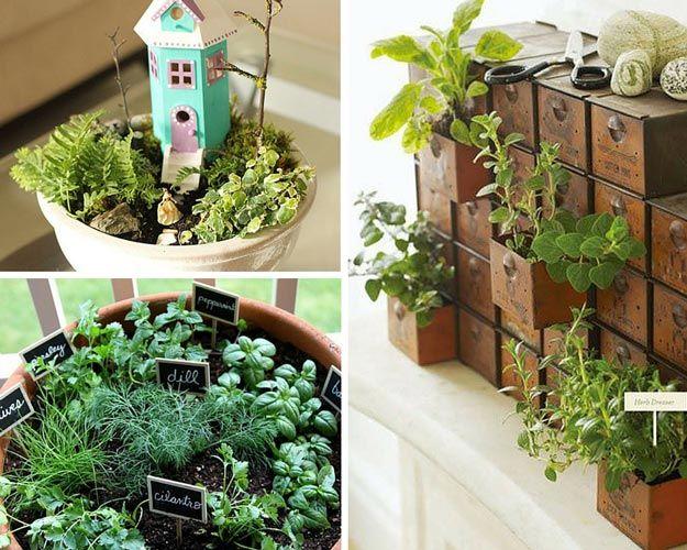 Creative Valentine\'s Day Ideas   Indoor herbs, Herbs garden and Crafts