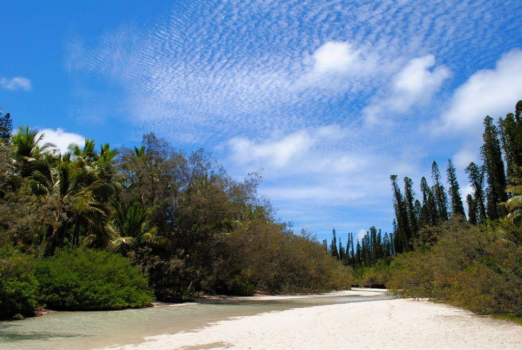 La Riviere De Sable Avec Images Caledonie Nouvelle Caledonie