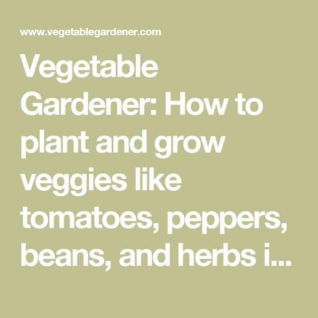 Vegetable Gardener How To Plant And Grow Veggies Like 400 x 300