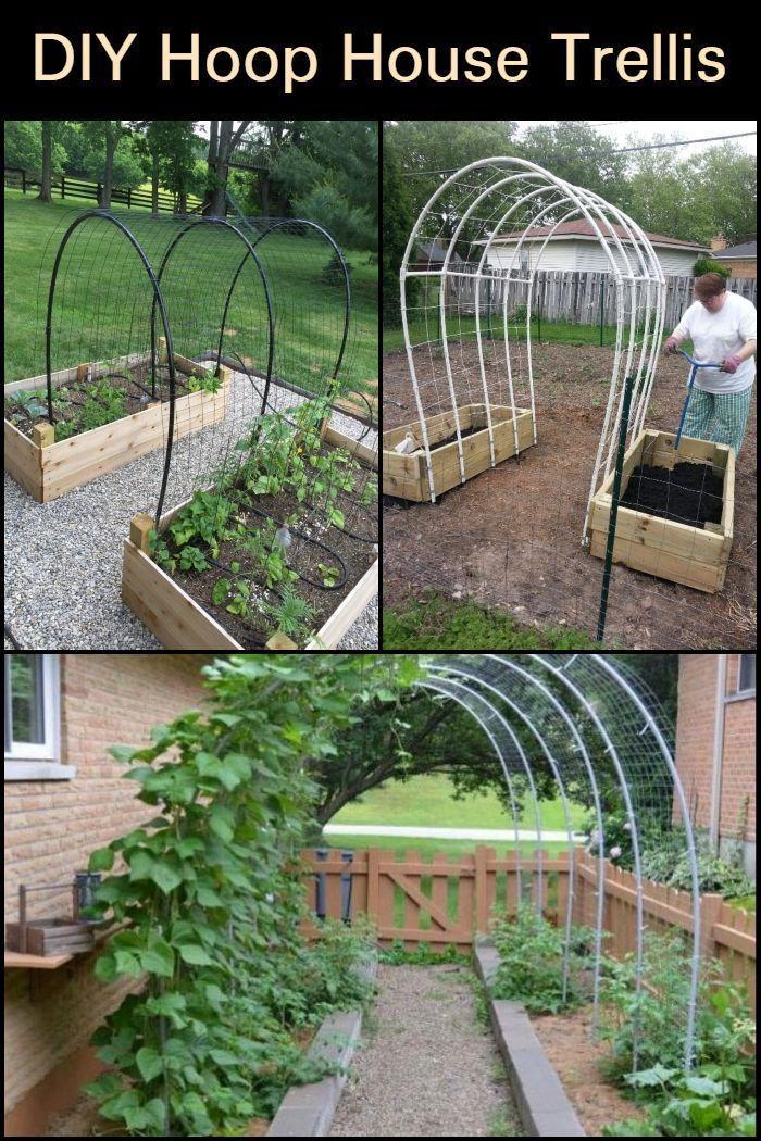 DIY Hoop House Spalier - My Blog - DIY Hoop House Spalier – Dieses DIY-Projekt f