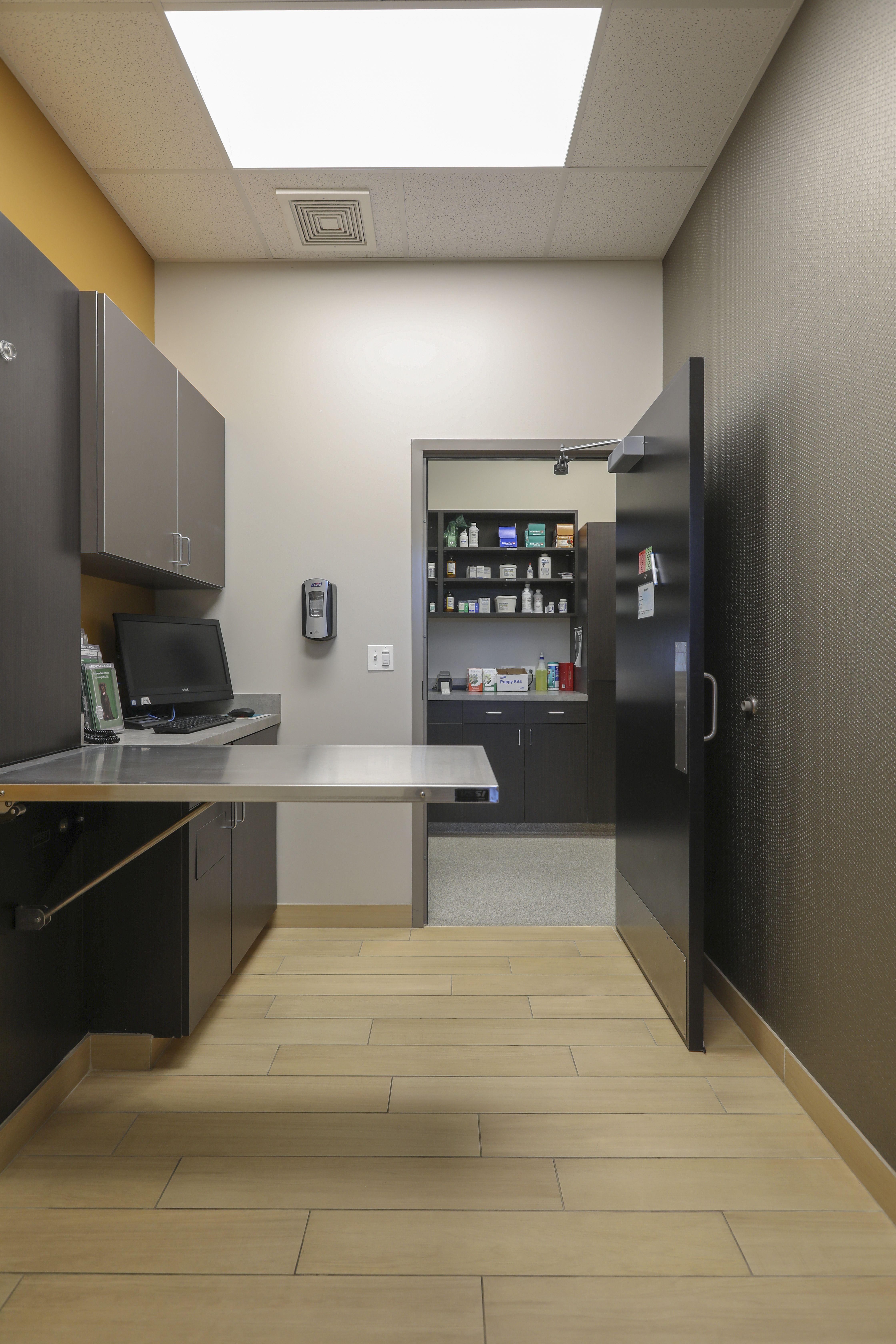 Animal Hospital Exam Room In 2021 Clinic Interior Design Hospital Design Veterinary Clinic