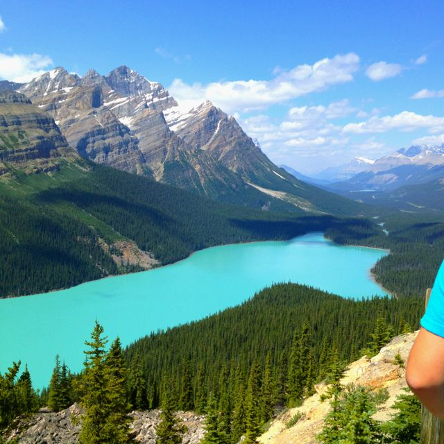 Lake Peyto. The road to Jasper Alberta. ...wish we went ...