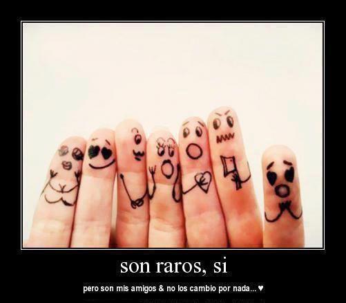 Son mis amigos!