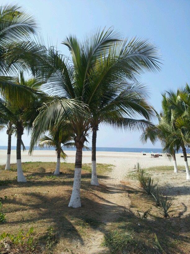 Playa Zicatela, Puerto Escondido, MX