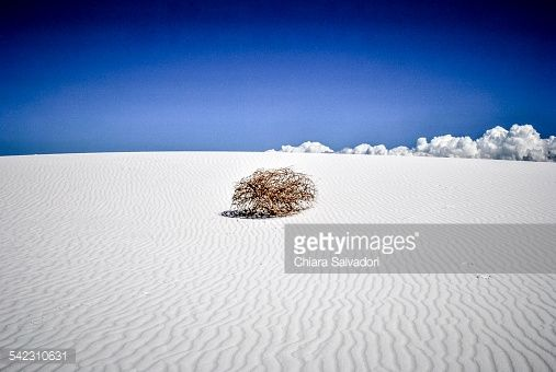 Missing into thin air... | #stock #photography #gettyimages #print #travel #whitesands #desert #new mexico |