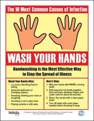 Handwashing Hand Hygiene Food Safety Posters Kitchen Safety