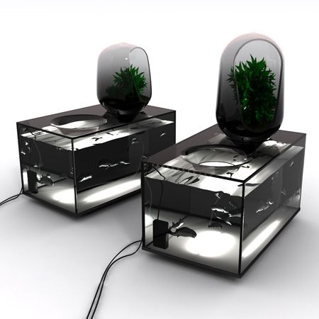 """""""refrigerator-aquarium"""" that breeds freshwater fish for eating and grows vegetables"""