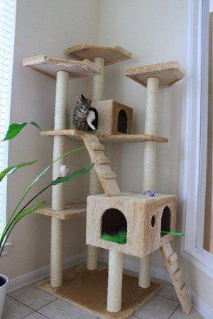 Amazon Com Beige 73 Cat Tree Pet House Pet Supplies Cat Tree