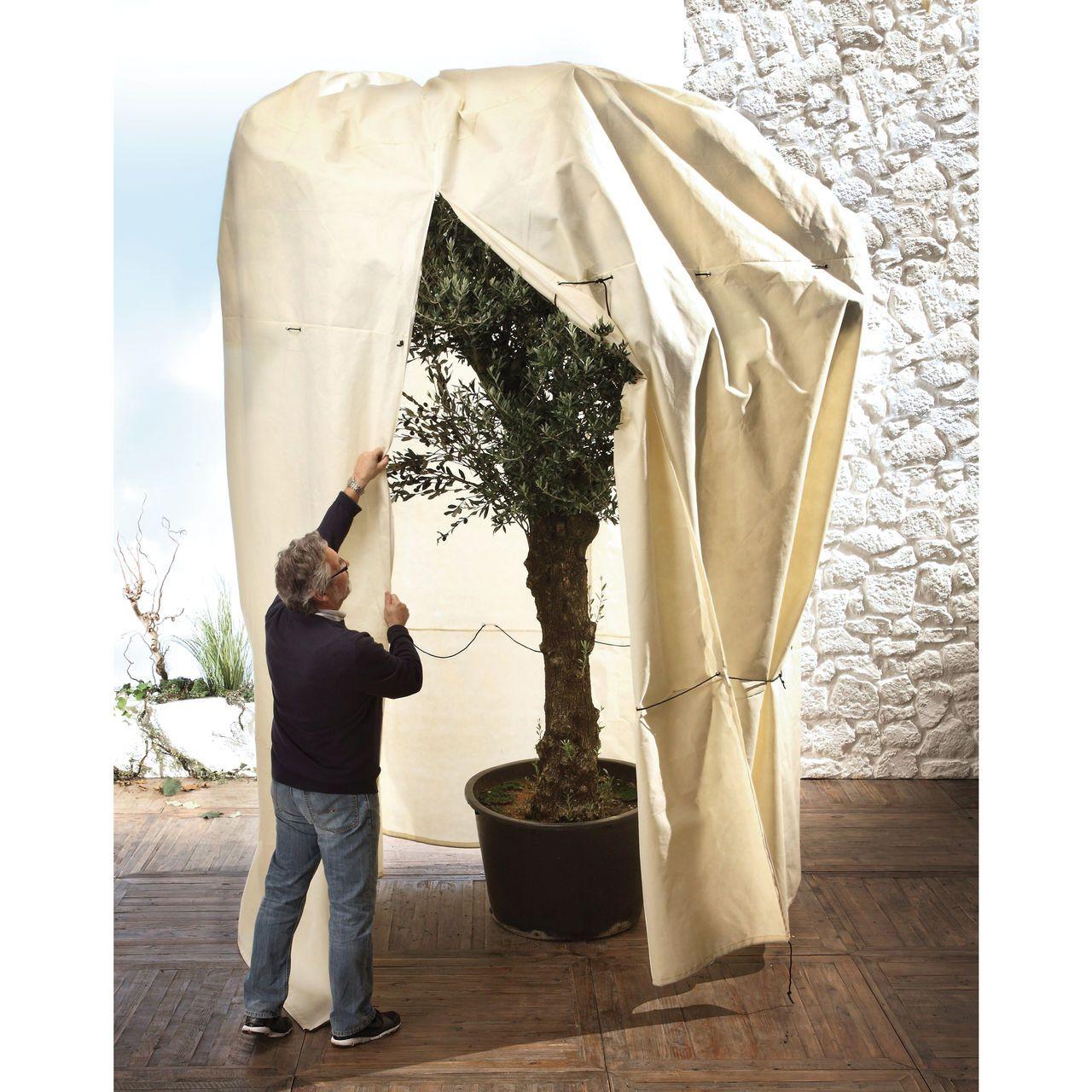 winterschutz f r k belpflanzen und gro e b ume str ucher oder palmen garten pflanzen. Black Bedroom Furniture Sets. Home Design Ideas