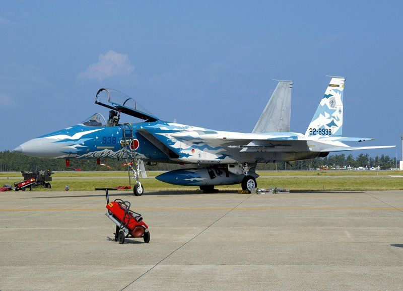 Pin by don molchan on cool jet paint jobs fighter jets