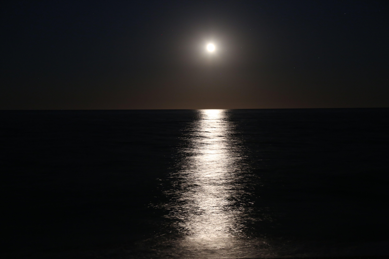 Pin De Summer Moon Em Reflections Lua Azul Pintura De Lua Bela Lua