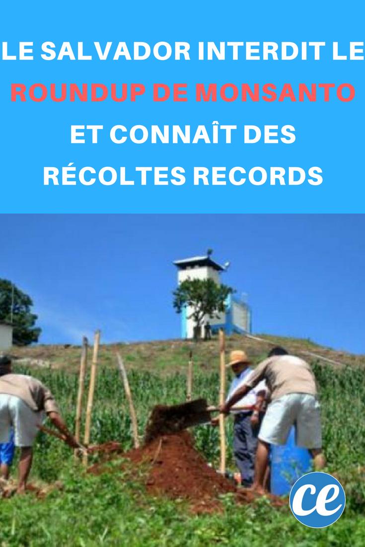 Le Salvador Interdit le Roundup de Monsanto et Connaît des Récoltes RECORDS.