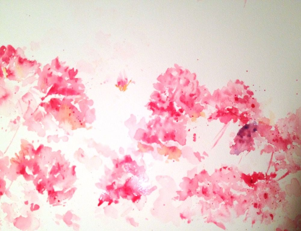 Watercolour Painting Tutorial Painting Pink Azalea Stage 1 With