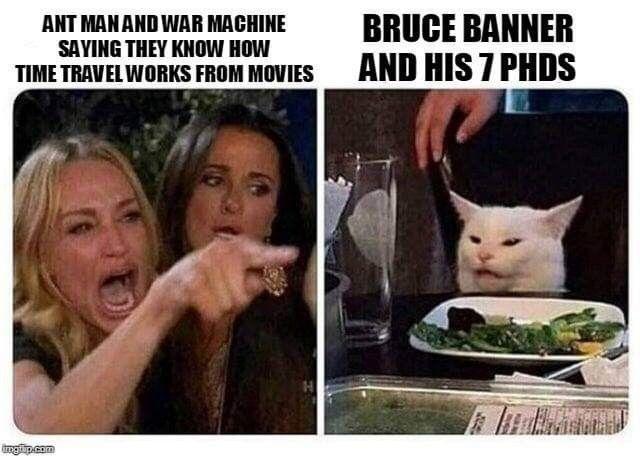 Pin By Mckenzie Radloff On Marvel Memes Cat Memes Dankest Memes