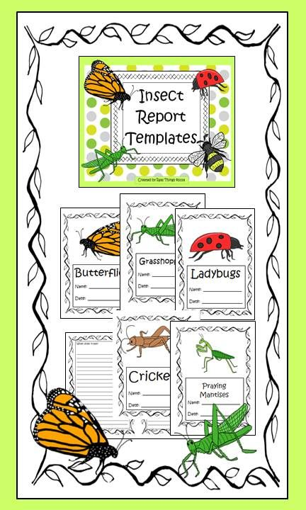Insect Report Templates  Insects Template And Students