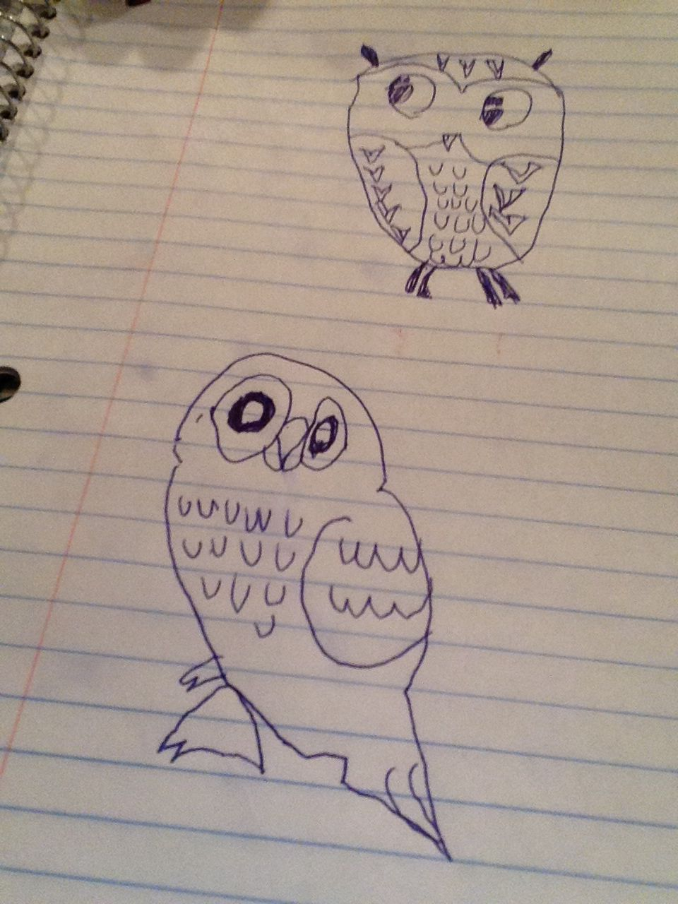 Hi this is my drawing of an owl.