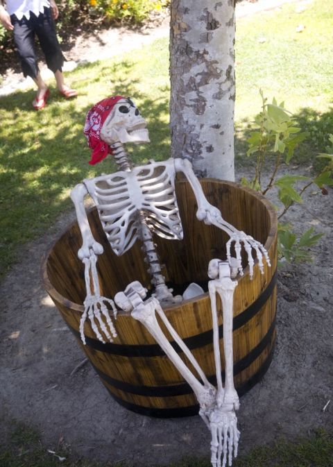 Pirate Party Decorating Ideas Skeleton
