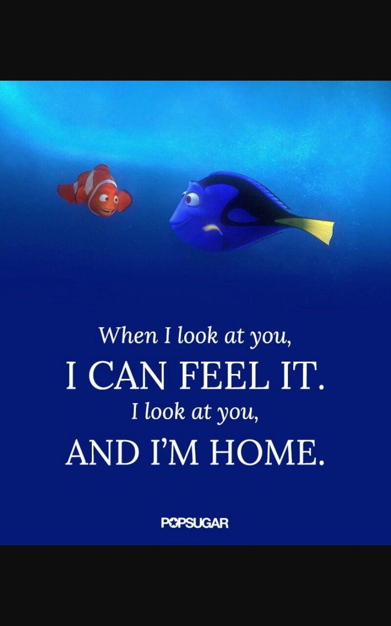 Finding Nemo Quotes I look at you and I'm home