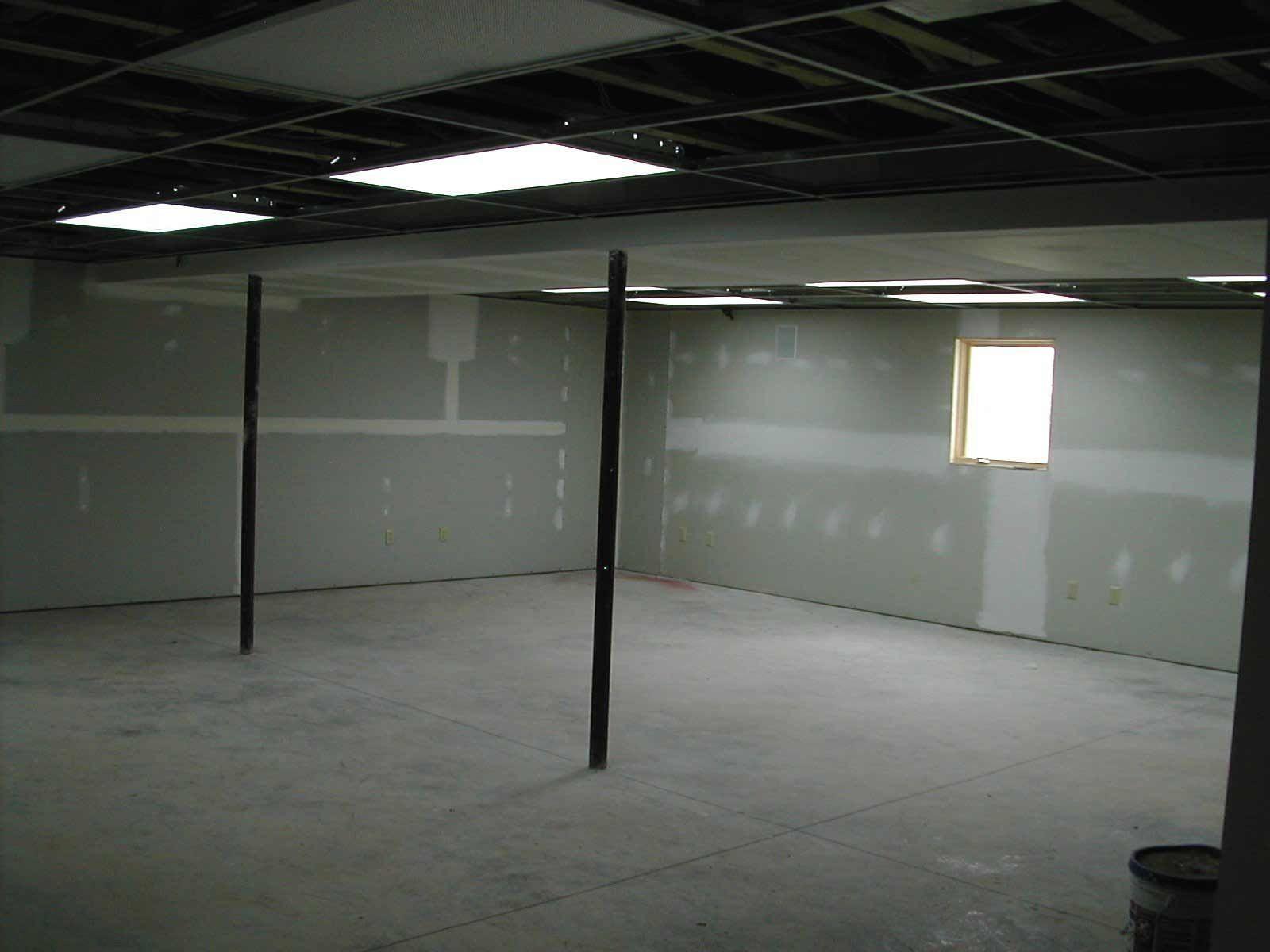 charming basement ceiling lighting for