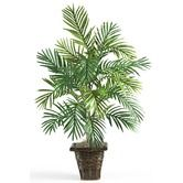Found it at Wayfair - Silk Areca Palm Plant with Wicker Basket in Green