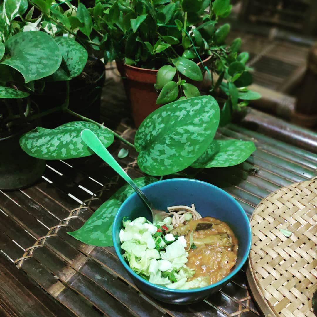 Pilihan Sustainable Eating Apa Sih Sustainable Eating Itu Bahasa Indonesianya Adalah Pilihan Makanan Yang Lebih Berkelanjutan Atau Lebih Selaras Alam Dar