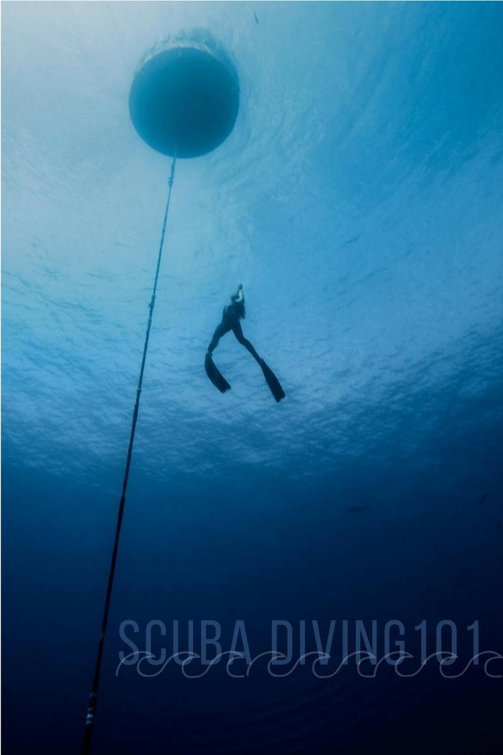 Water Adventure, Bahamas Snorkeling, Bahamas