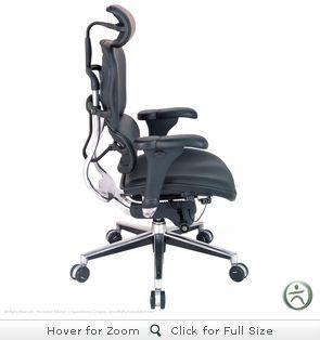 Pleasing Raynor Ergohuman Chair Leather Chair With Headrest Le9Erg Ibusinesslaw Wood Chair Design Ideas Ibusinesslaworg