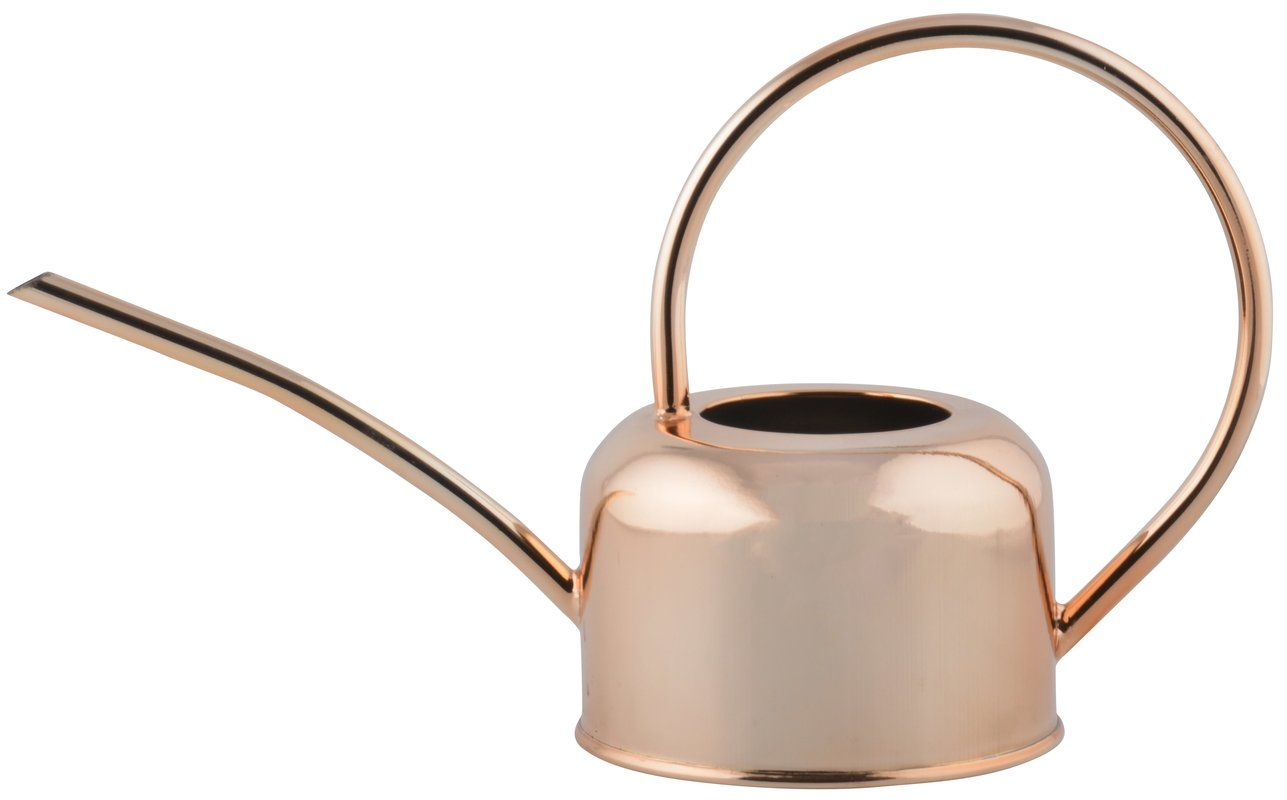 Copper Plated Watering Can Plating Canning Brooms Brushes 640 x 480