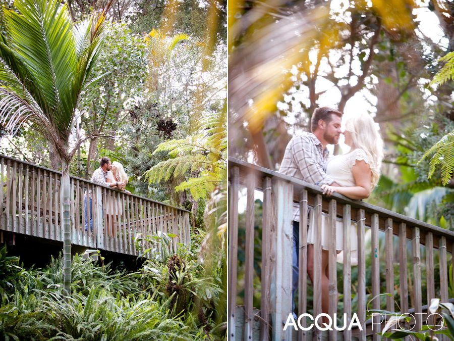 c5b66d608162691b4b338d6b96588c97 - San Diego Botanical Gardens Free Tuesday