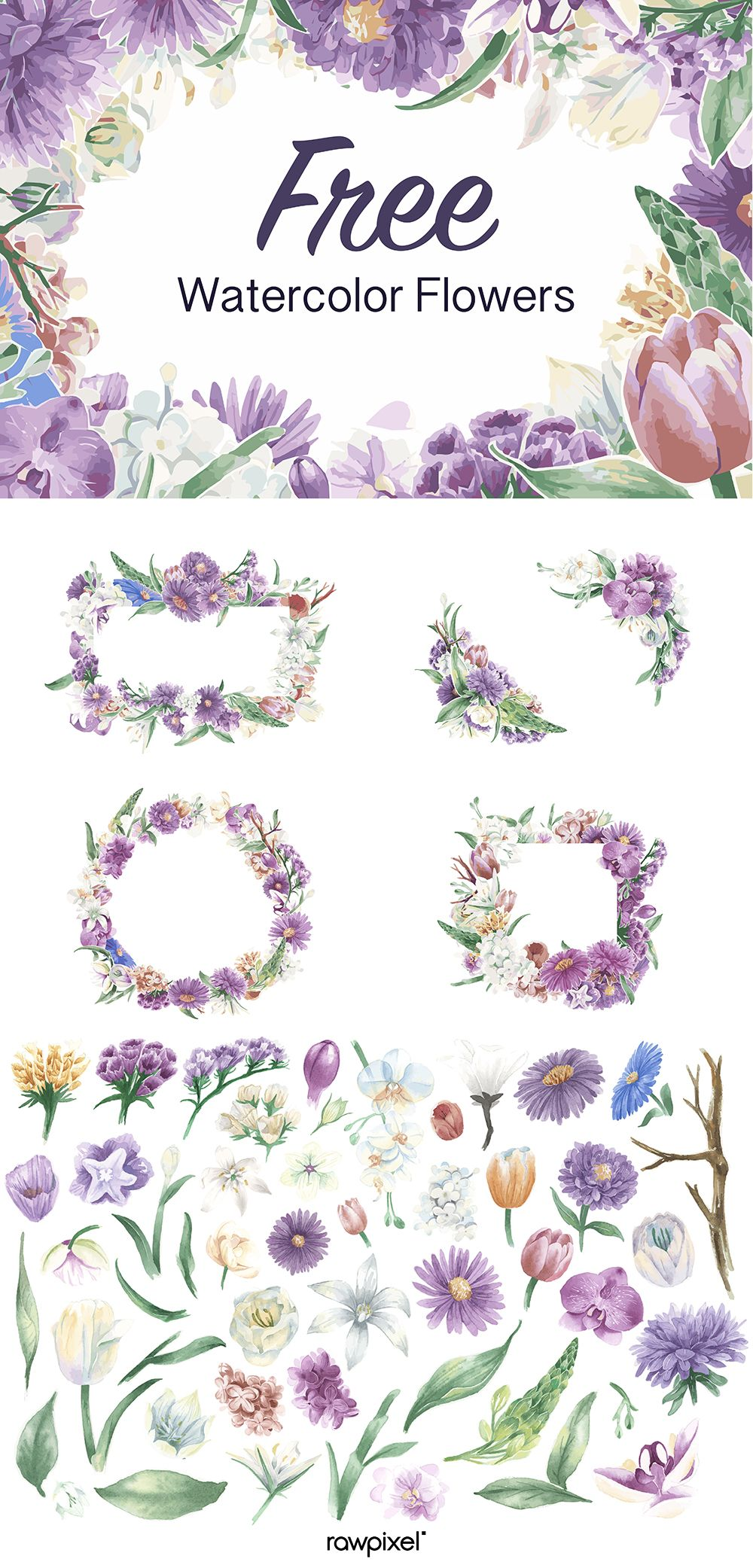 Download Free Vector Watercolor Flowers Images At Rawpixel Com