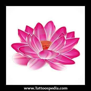 Japanese Water Lily Tattoo Designs Water Lily Tattoos Lily Tattoo Lily Tattoo Design