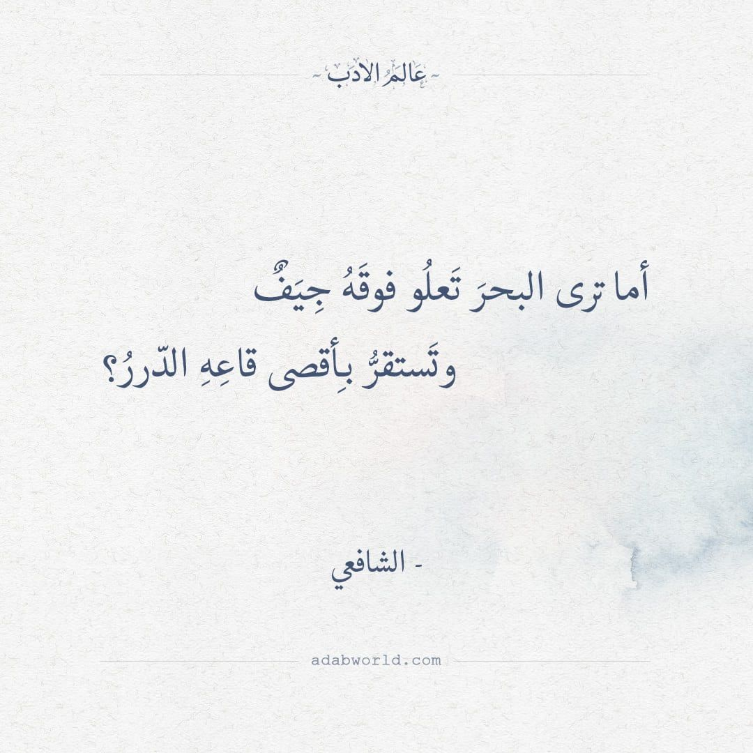أما ترى البحر تعلو فوقه جيف الشافعي عالم الأدب Words Quotes Wisdom Quotes Life Spirit Quotes