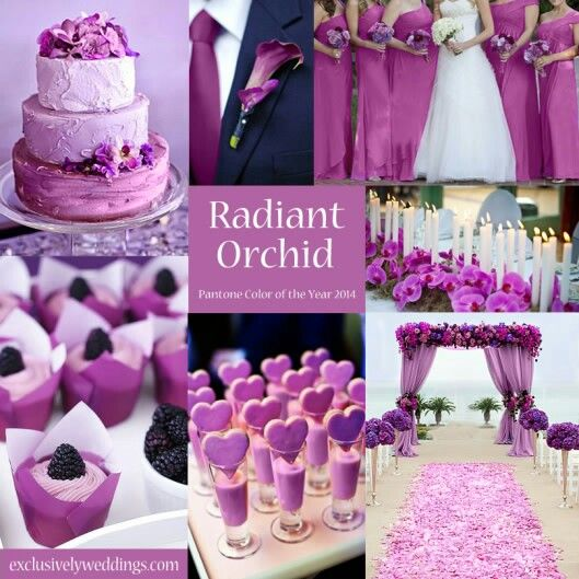 Radiant Orchid Wedding Motif Orchid Wedding Theme Orchid