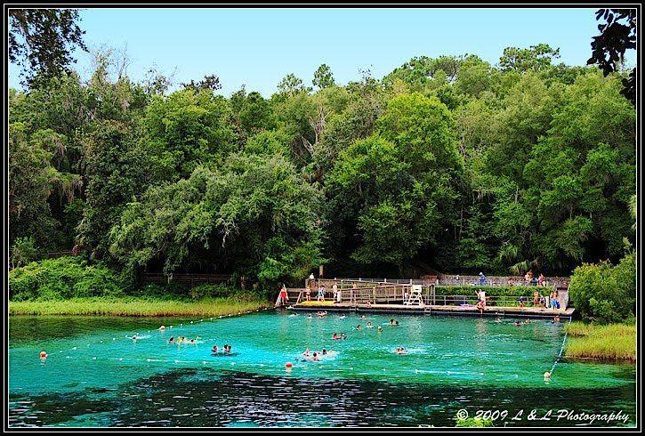 Ocala Florida Photos Rainbow Springs Swimming Area
