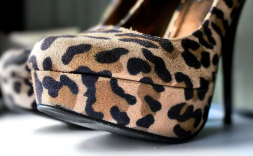 Pin by Joanna Joyce on s t r u t shoes, Leopard
