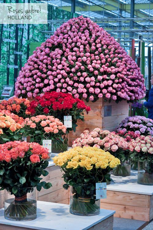 Flowerona Reflects: fairs & flower heaven | Flowerona | Huge flower ...