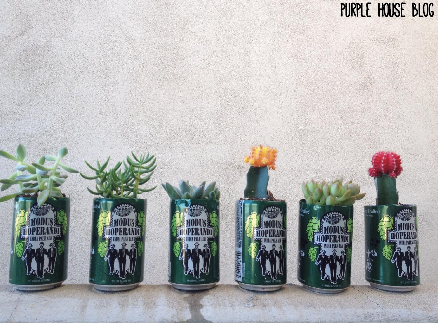 beer can planter DIY purplehouseblogwordpresscom DIY