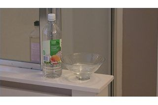 How To Get Rid Of Musty Smells In Homes Hunker Mildew Smell Mildew Odor Musty Smell In House
