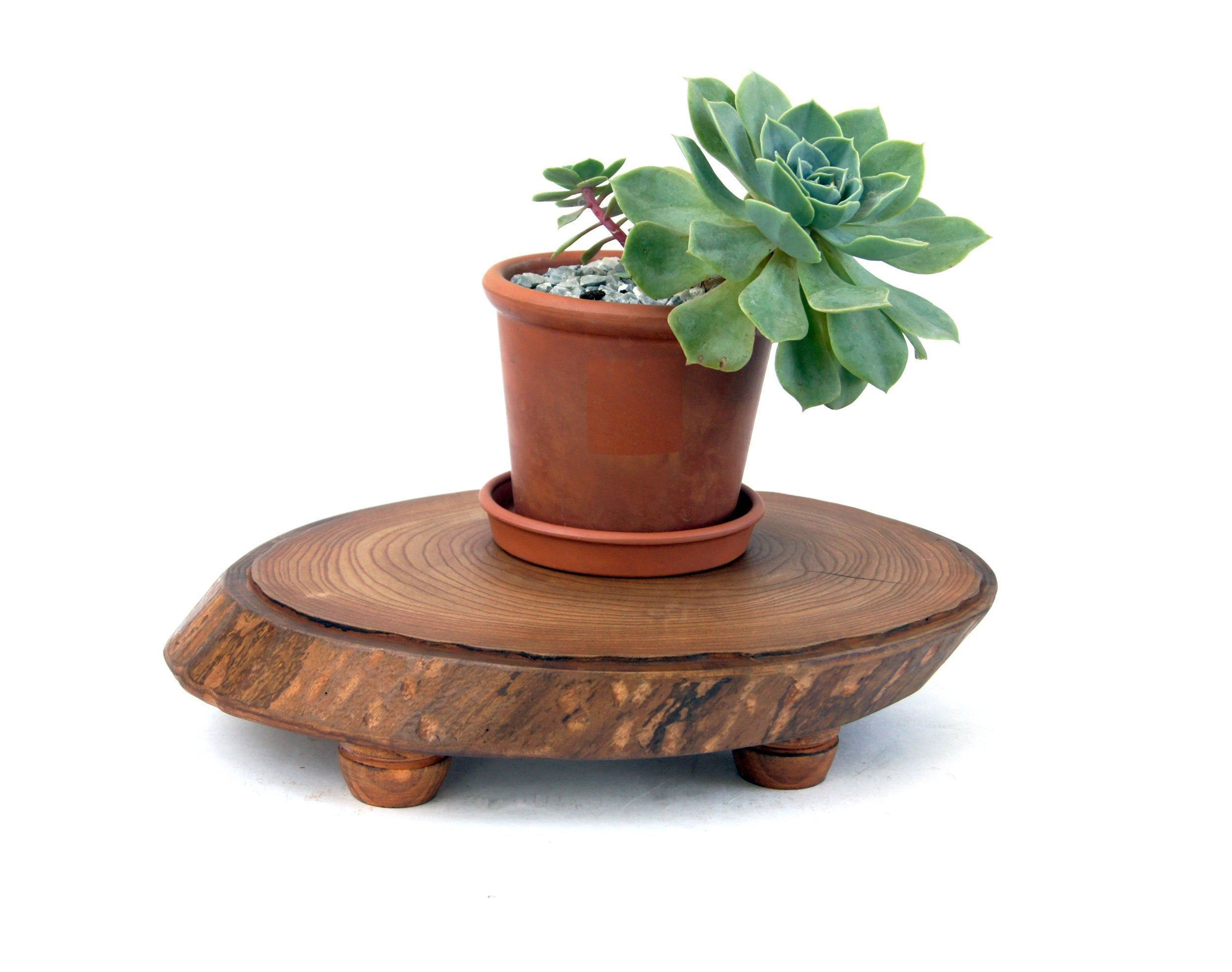 Small Live Edge Wood Slab Plant Stand Rustic Wooden Planter Stand Indoor Flower Pot Holder Tree Stum In 2020 Indoor Flower Pots Plant Stand Indoor Planter Stand Indoor