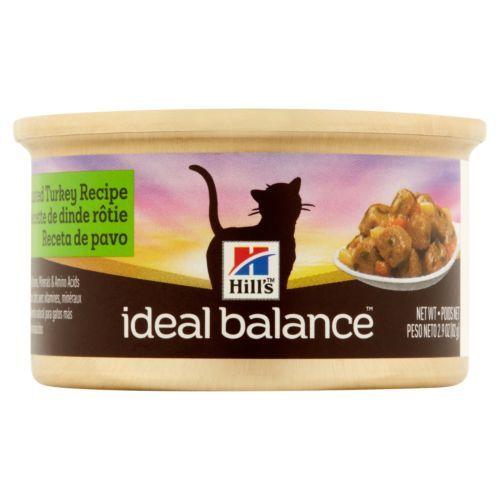 Homemade Cat Food Gravy Recipes Food