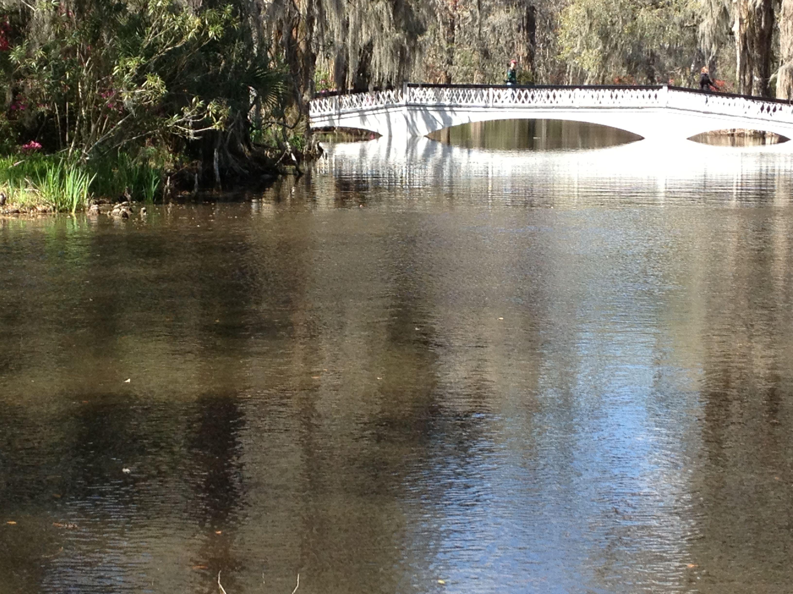 Footbridge at Magnolia plantation and Gardens Charleston South ...