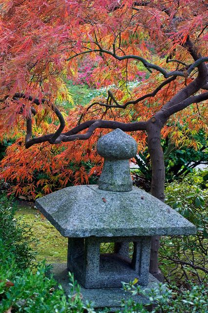 Japanese Stroll Garden Springfield Mo Go To For A Free Greater