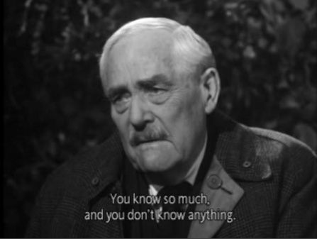 wild strawberries movie online