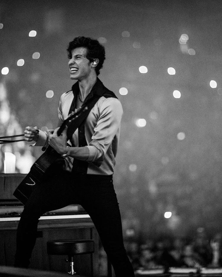 Shawn Mendes The Tour Show 70