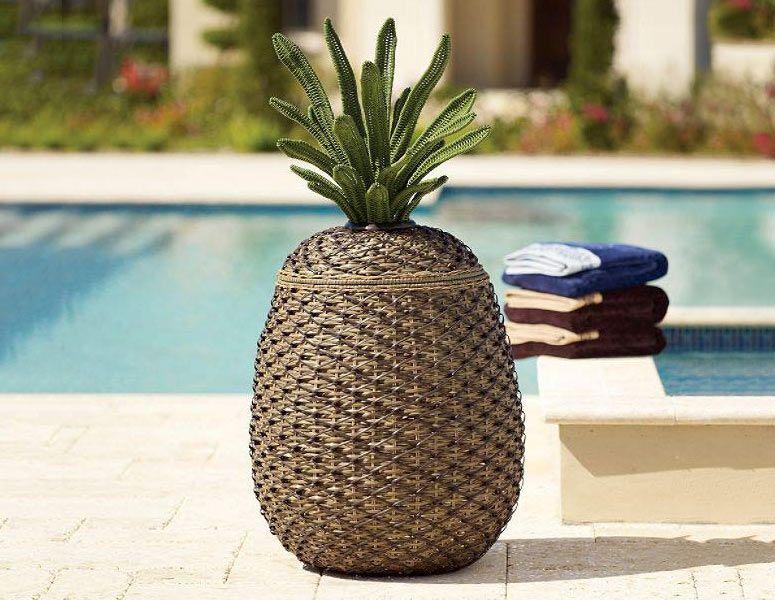 Pineapple storage basket...