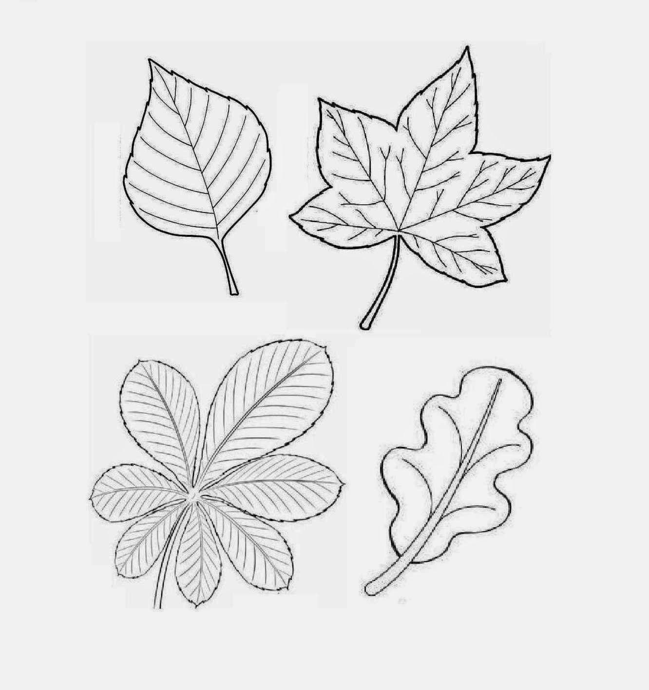 Jesienne Pomoce Dydaktyczne Lotus Flower Tattoo Flower Tattoo Line Art