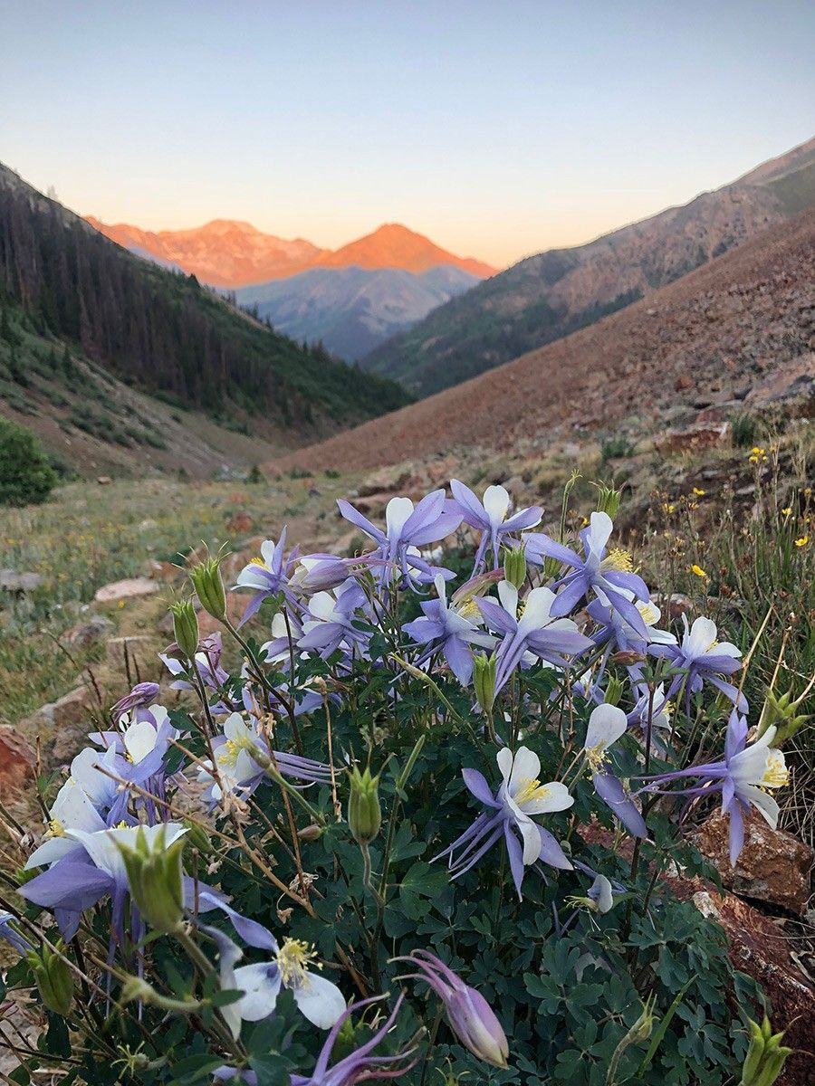 Jake Gray Outdoor Photographer And Hiking Guide Austin Texas Colorado Wildflowers Cool Places To Visit California National Parks