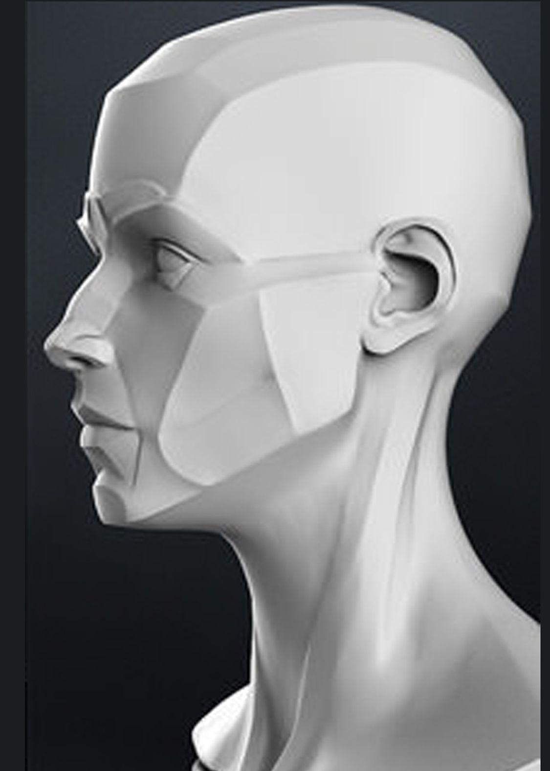 Pin de Cesar Gpe en Anatomía | Pinterest