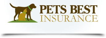 I Have Pets Best Insurance For My Jennifur Just Got A Payment For Her That Covers The Whole Year S Best Pet Insurance Pet Insurance Cost Cheap Pet Insurance