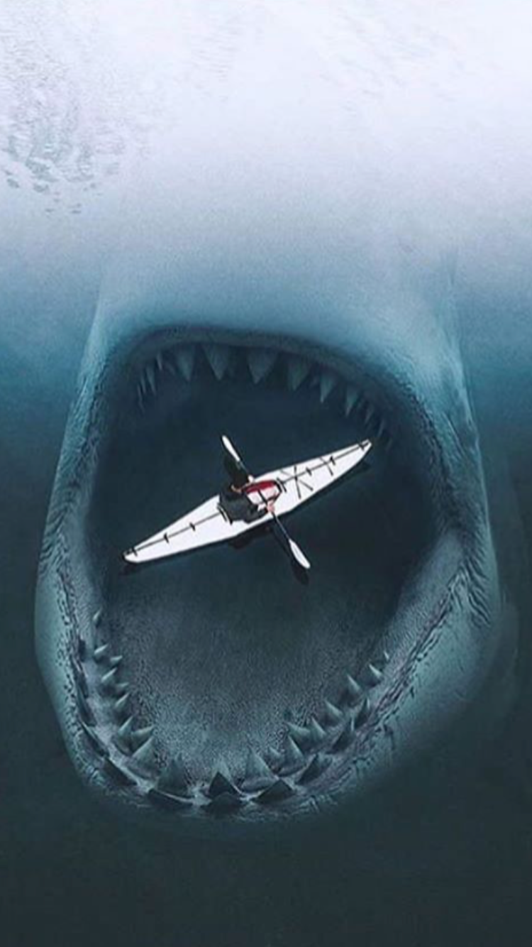 Pin By Tony Polito On Yakattack With Images Shark Wallpaper